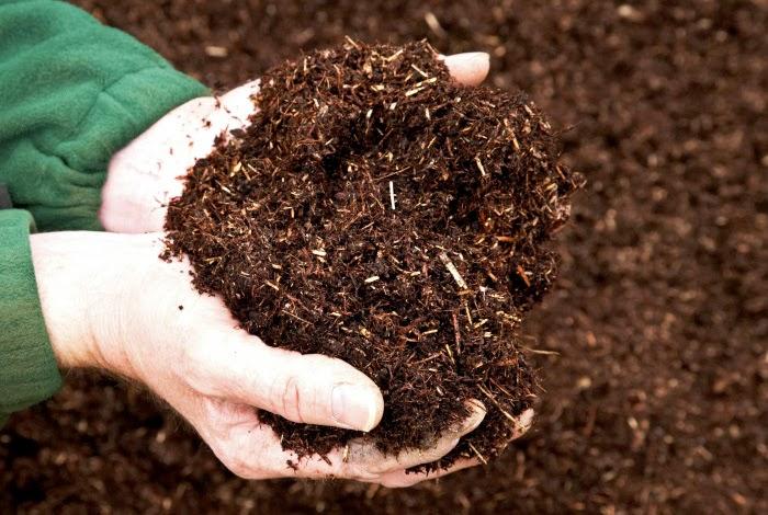 Phân hữu cơ cung cấp dinh dưỡng đầy đủ, cân đối và bền vững cho cây trồng